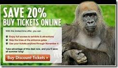 bronx zoo 20 percent gorilla 2012