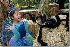 Tombstones Hay Maze Hay Ride Visitors in Costumes